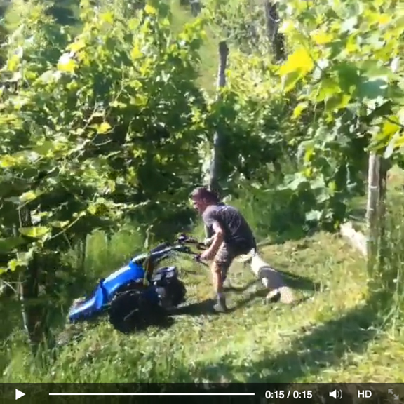 video mowing the grass